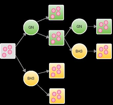 Figura 3 - Trasformazioni realizzate